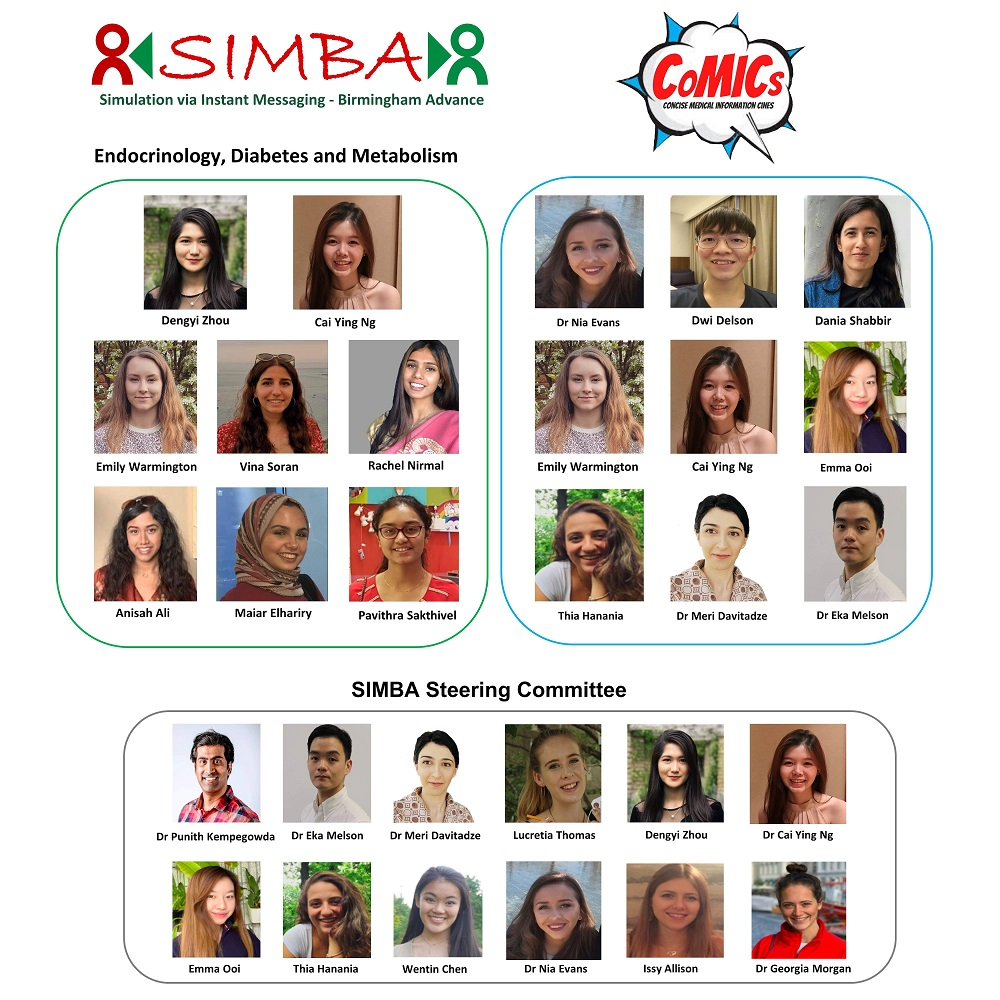 The SIMBA team and steering committee